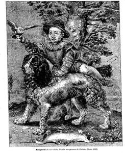 gravure-de-goltzius-epagneul-1592
